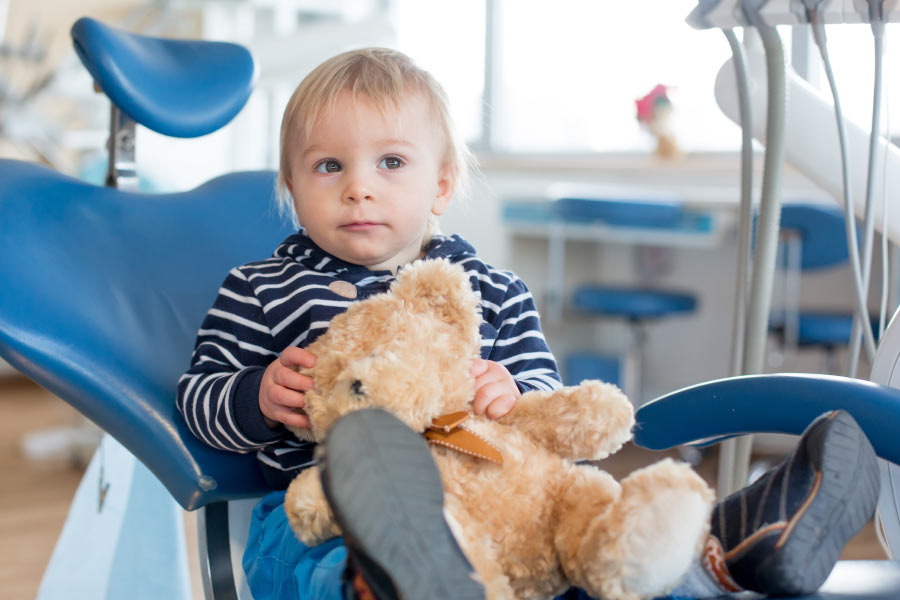 Little boy & his teddy bear in the dental chair for his first dental visit